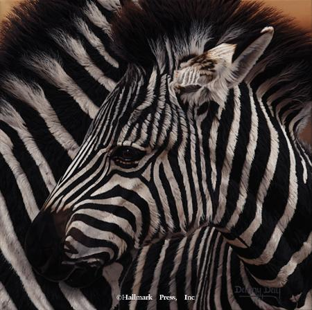 Eyes of Africa - Zebra
