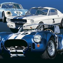 Shelby Cars